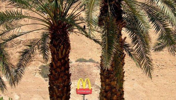 negev-desert-israel-mcdonalds