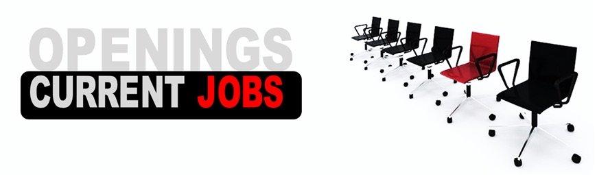 Current job openings at SOEG (Global Hospitality Portal)