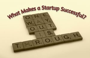 What Makes a Startup or an Entrepreneurial Venture Successful?