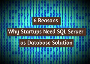 Read more about the article 6 Reasons Why Startups Need SQL Server as a Database Solution