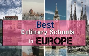 Read more about the article 10 Best Culinary Schools In Europe